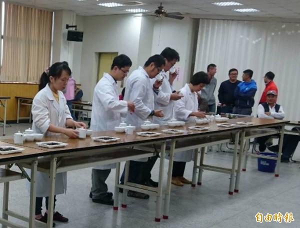 新竹縣冬季東方美人茶(膨風茶)優良茶比賽一連4天在峨眉鄉農會舉辦,評審過程嚴謹。(記者蔡孟尚攝)