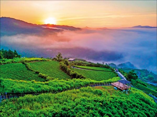 坪林茶鄉獲選國際「2018全球百大綠色旅遊目的地」。(觀旅局提供)