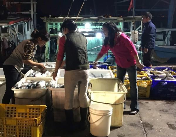 連日來線西鄉漁民大豐收,野生烏魚堆滿塭仔港碼頭,彰化縣議員賴清美(右)前往關心。(記者湯世名翻攝)