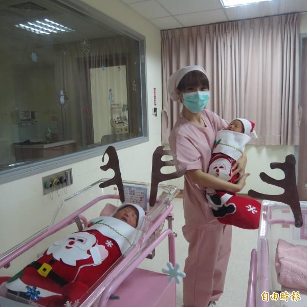烏日林新醫院的嬰兒室把新生兒放入「耶誕襪」,當作新生兒爸媽的耶誕及新年禮物,讓這些新手爸媽超開心。(記者蘇金鳳攝)