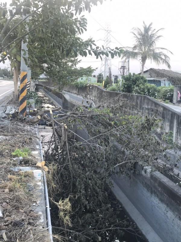 溪州鄉莿仔埤圳沿線,被丢棄大量的斷枝。(民眾提供)