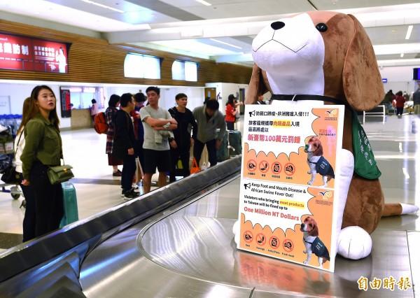為加強非洲豬瘟防疫宣導,動植物防疫檢疫局4日起在桃園機場行李轉盤、入境長廊擺設大型防疫犬布偶,並掛上警告標語,提醒旅客千萬不要攜帶違規肉品入境,以免遭到重罰。(資料照)