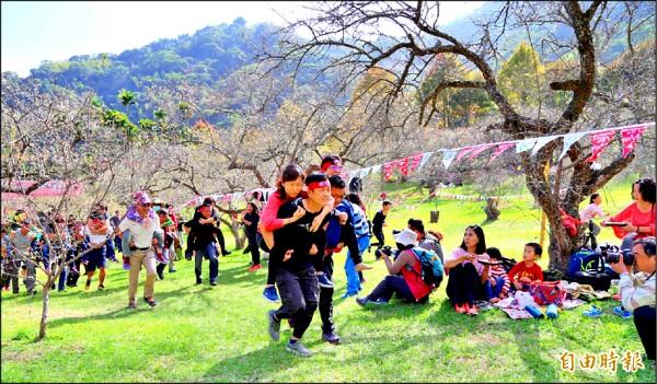 南投縣信義鄉「踏雪尋梅」活動中,夫妻參與揹負競賽。(記者謝介裕攝)