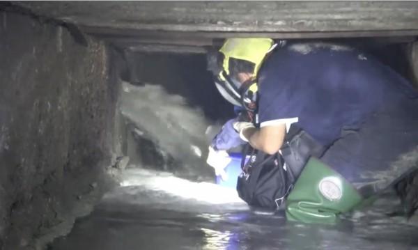 督察人員戴上防毒面具,在充滿硫化氫的排水溝渠內採樣。(記者陳冠備翻攝)