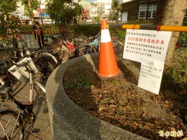 公園周邊設有請勿停車與移除時間通告,依然有多部腳踏車未遷移。(記者陳冠備攝)