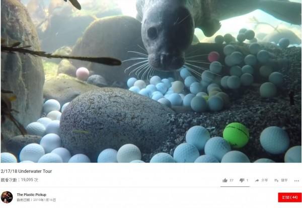 高爾夫球在海中分解後,會產生塑膠微粒,最終進入食物鏈。(圖擷自YouTube)