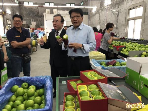 屏東縣長潘孟安(右一)推薦屏東好吃蜜棗。(記者羅欣貞攝)