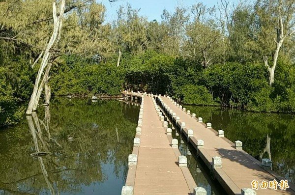 北門雙春濱海遊憩區全新紅樹林木棧道和忘憂森林。(記者楊金城攝)