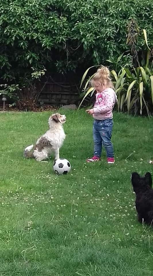 艾比是茉莉最好的朋友。(圖翻攝自臉書)