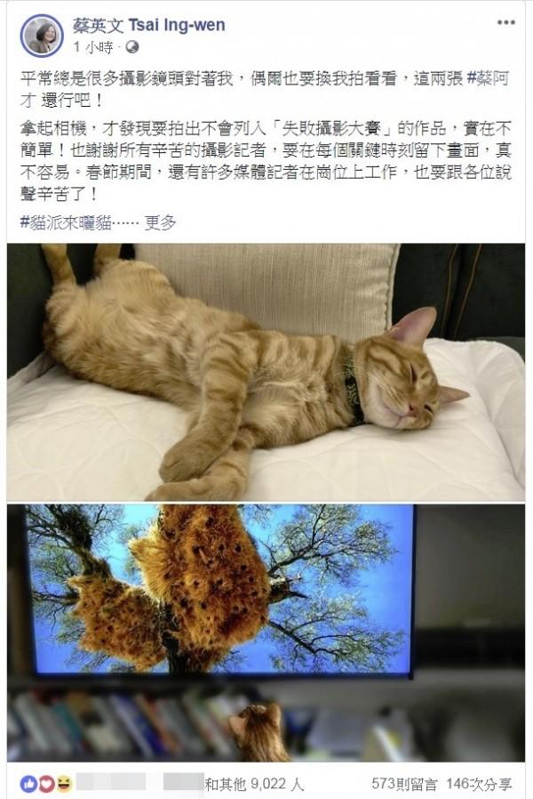 蔡英文總統在大年初二秀出愛貓照,吸引大批粉絲按讚。(圖擷自臉書)