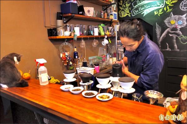 好茶咖啡工作室老闆彭瑋翔手沖咖啡,店貓蹲在櫃台監督「沖泡進度」。(記者花孟璟攝)