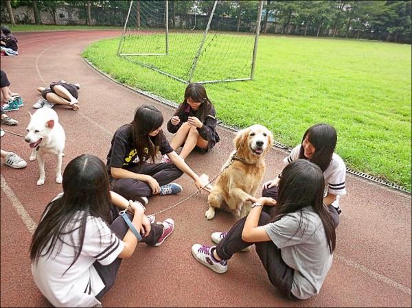 回應立法院完成動物保護法修法 ,教育部國教署近日成立動保教育教材小組,一年內融入教學課程。(教育部提供)