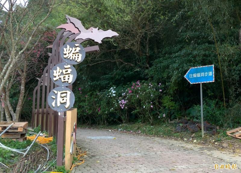 桃市府觀光旅遊局整修「蝙蝠洞」步道。(記者李容萍攝)