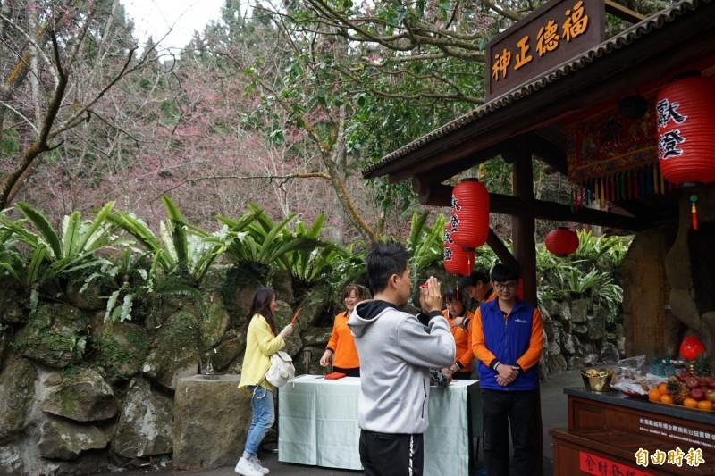 九族文化村櫻花祭,在元宵節舉辦土地公借金活動,吸引遊客參拜求金。(記者劉濱銓攝)