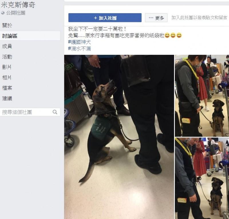 有網友昨晚回台,在機場碰見檢疫犬聞了聞附近旅客的行李後,就直接坐下,旅客被嚇到差點飆淚,原來是麥當勞紙袋附著的食物味道惹禍。(圖擷取自臉書社團「米克斯傳奇」)