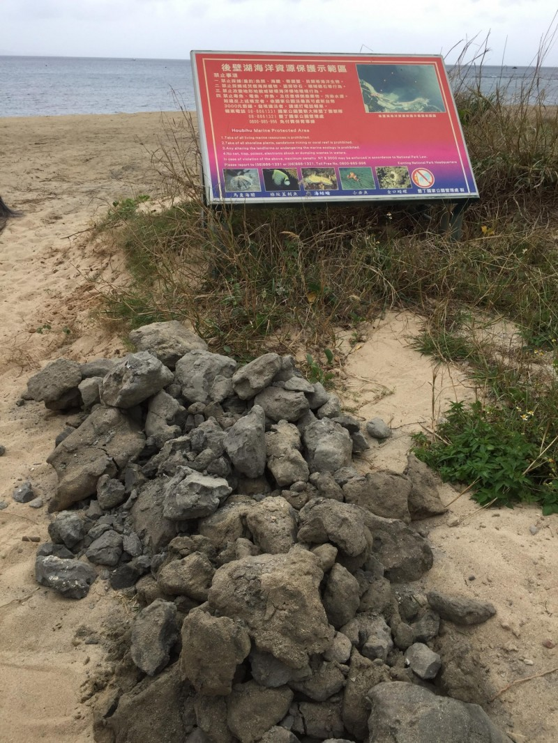 墾丁後壁湖漁港清淤「養灘」,黑泥塊引發討論。(記者蔡宗憲翻攝)