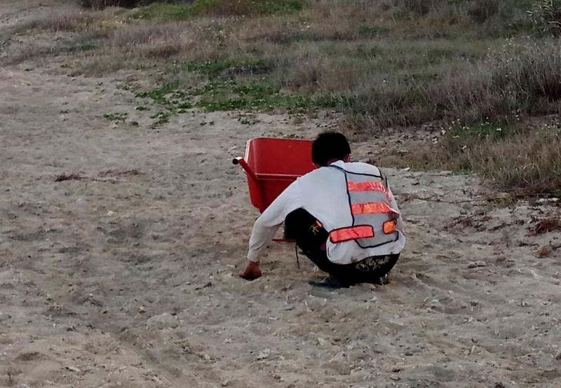 墾丁後壁湖漁港清淤黑泥塊引發討論,施工單位派人撿起。(記者蔡宗憲翻攝)