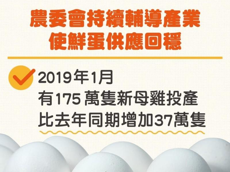 1月已有175萬隻新母雞投入生產,較去年平均每個月新母雞增加了37萬隻。(圖擷取自臉書)