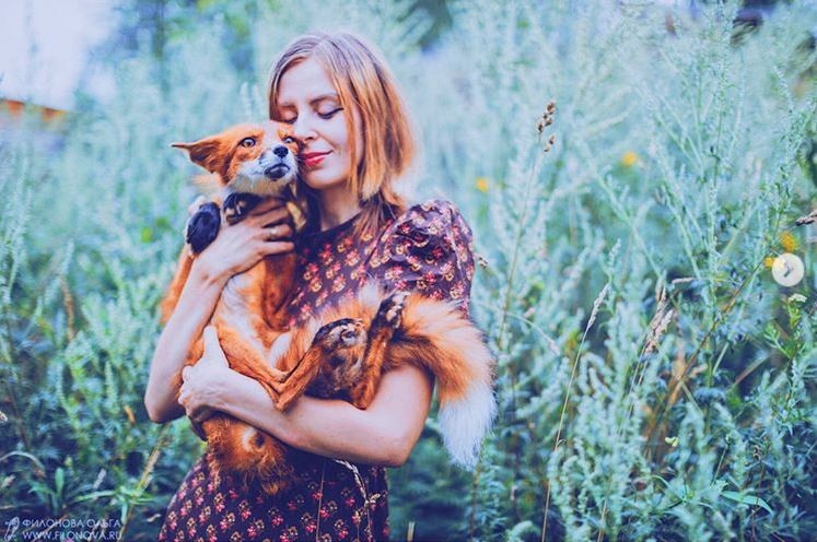 布什卡列瓦的流浪動物之家現在不只有狗狗,還有收容一些浣熊、狐狸、北極狐等等。(圖擷取自「Danka Pu」Instagram)