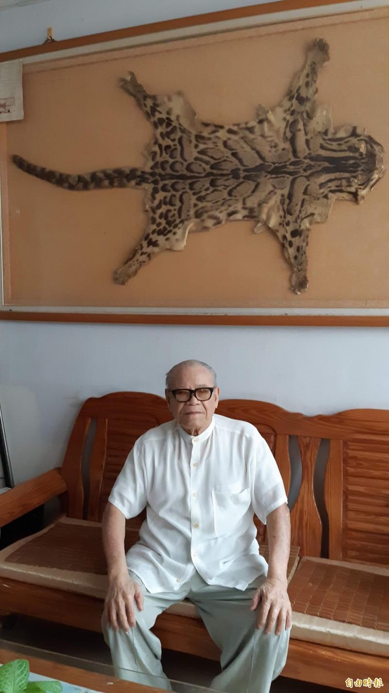台東市95歲耆老林尚珍與牆上掛著的傳家寶「台灣雲豹」全皮。(記者黃明堂攝)