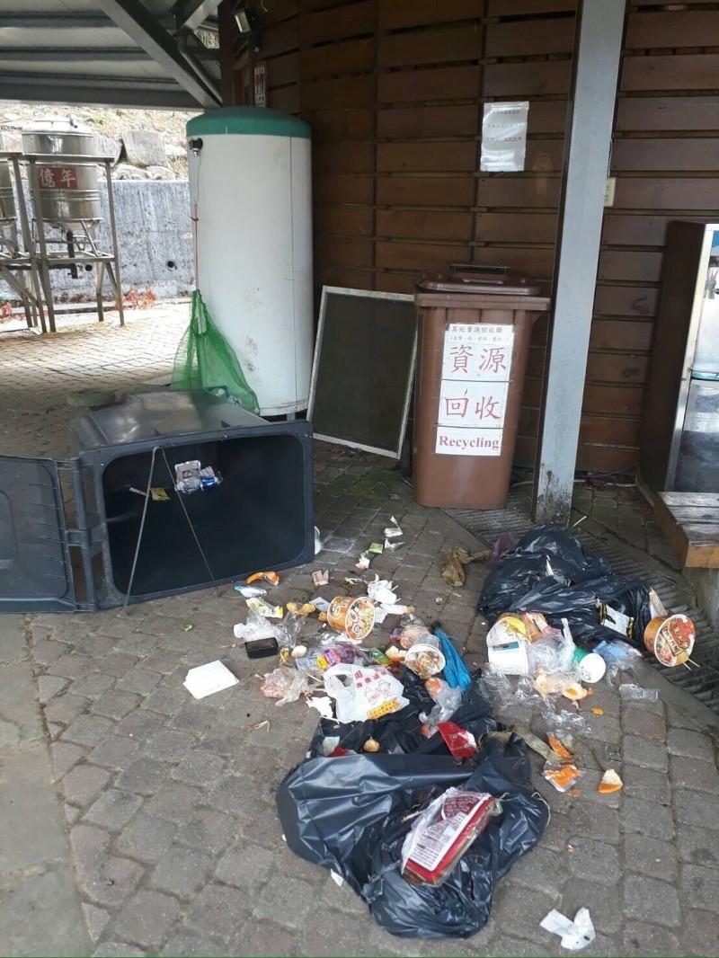 玉山國家公園塔塔加遊憩區,出現台灣黑熊翻倒垃圾桶覓食,成為塔塔加首例。(玉管處提供)