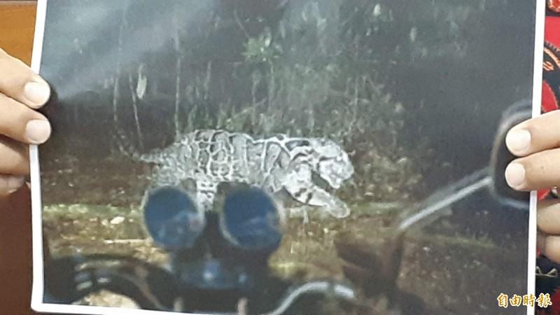阿塱壹部落模疑族人騎機車目擊台灣雲豹的電腦繪圖。(記者黃明堂攝)