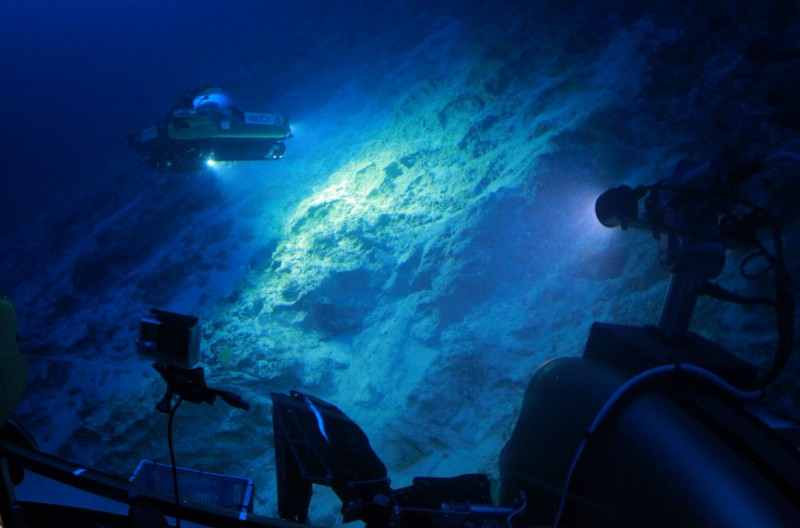 最新研究指出,海溝最深處的動物的消化管內竟出現塑膠碎片,代表人類對環境造成的汙染已達地球深處。(法新社)