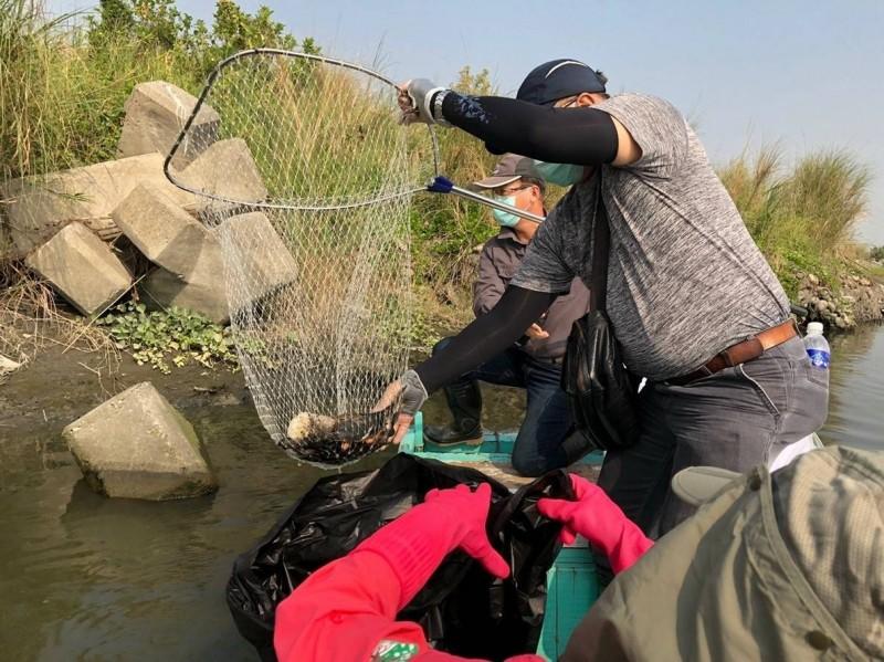 志工乘竹筏打撈鳥屍。(記者蔡清華翻攝)