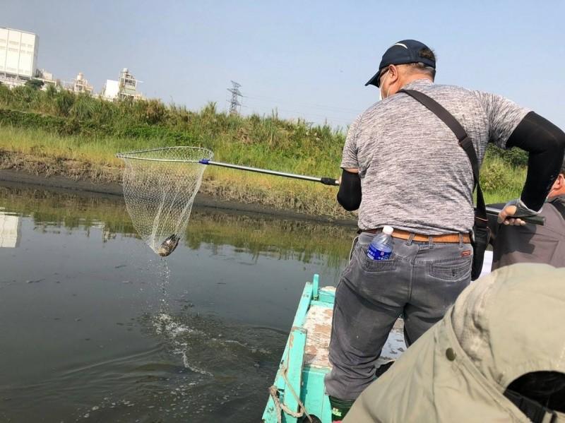 志工在水面上清理鳥屍。(記者蔡清華翻攝)