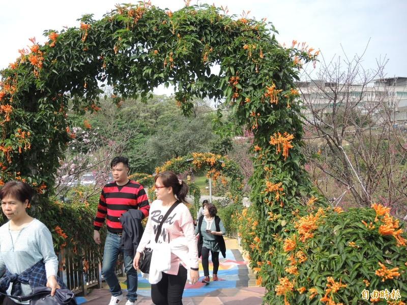 鶯歌永吉公園遍植花木,正值花季,遊人如織。(記者翁聿煌攝)