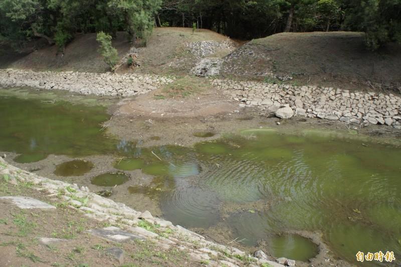 澎湖休憩園區的蓮池與荷池,泥沙淤積相當嚴重。(記者劉禹慶攝)