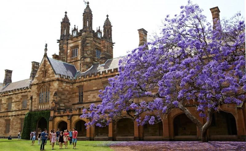 雪梨大學的教學辦公中心「The Quadrangle」,與電影中的霍格華茲魔法與巫術學院的原型、英國達勒姆座堂(Durham Cathedral)有相似之處。(圖取自雪梨大學官網)