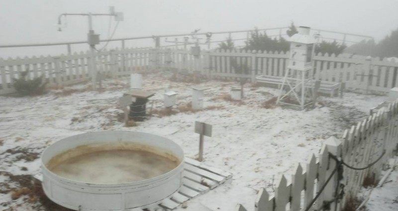 玉山因冷氣團來襲下雪,目前積雪約1公分。(記者謝介裕翻攝)