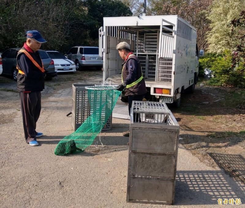 彰化市公所清潔隊今天出動捕捉流浪狗,人狗上演追逐戰,最後抓到6隻幼犬。(記者湯世名攝)