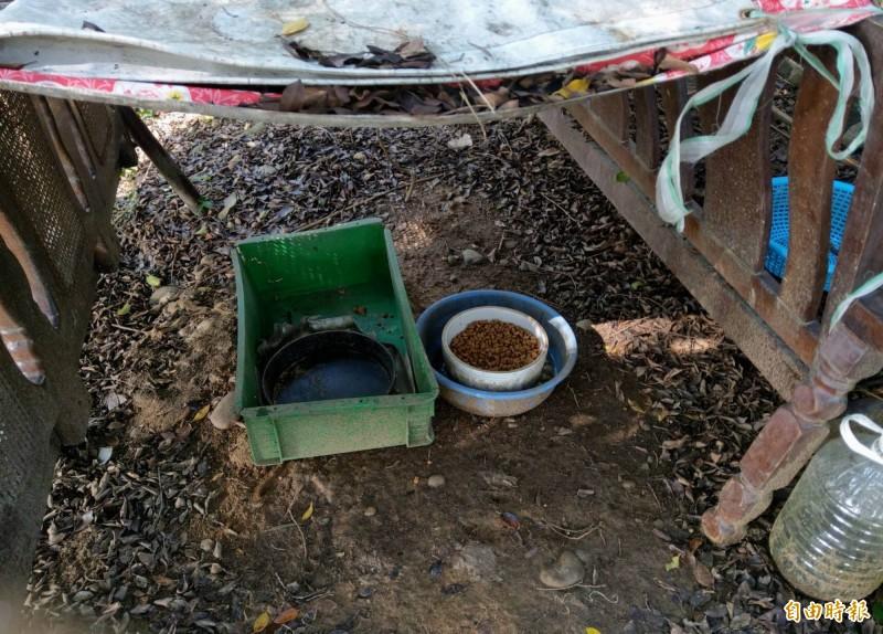 彰化市公所清潔隊員發現台鳳路山坡設有餵食區,研判有人為飼養流浪狗。(記者湯世名攝)