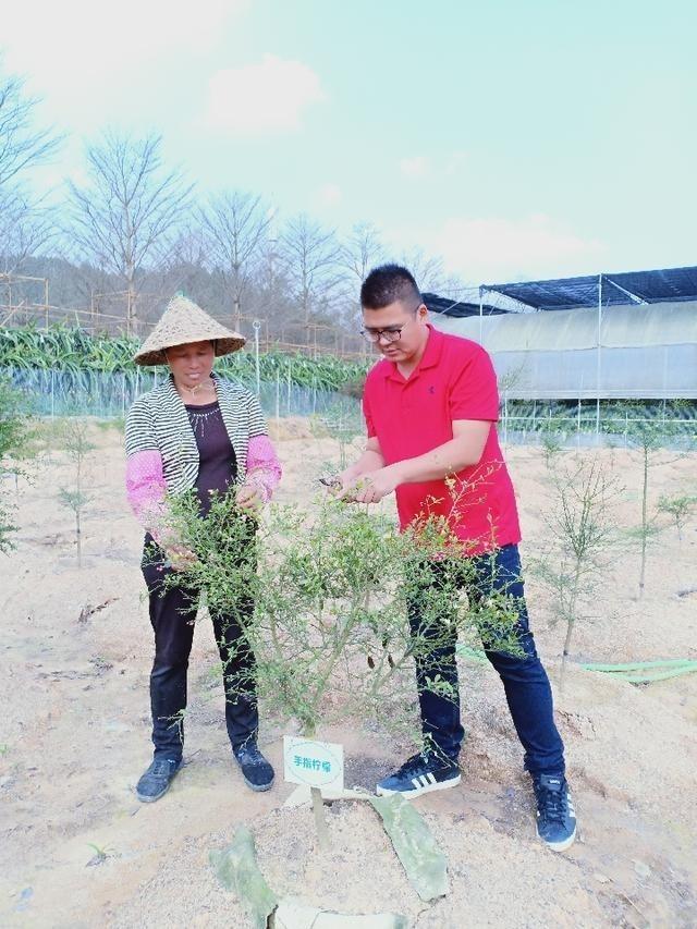 三十九歲、出身台灣嘉義農業世家的蔡志陽,最近獲聘擔任「漳浦縣台籍科技特派員」,圖為他與中國果農分享果樹栽培知識。(取自網路)