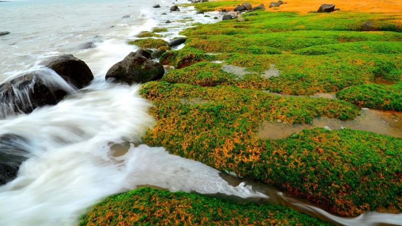 季節限定美景!小金門「綠石槽」驚豔 還有黃紅褐色彩