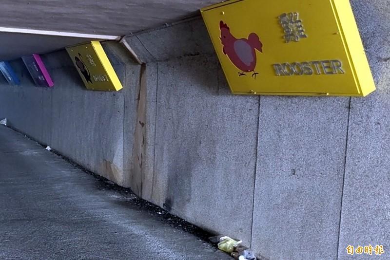南投市「12生肖星空夜廊」地面遭人亂丟垃圾情形。(記者謝介裕攝)
