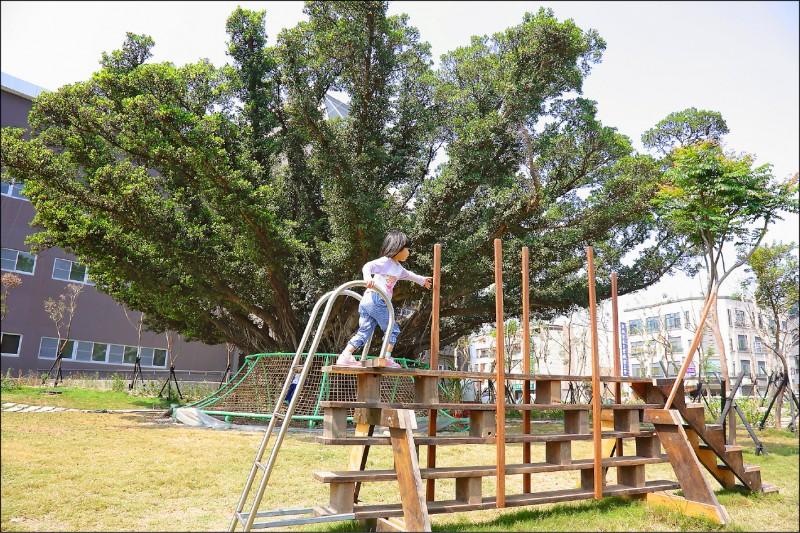 實驗劇場大樓旁的大榕樹,儼然成為台江文化中心銜接過去與未來的精神象徵,周邊並加設學童遊憩設施。(記者李惠洲/攝影)