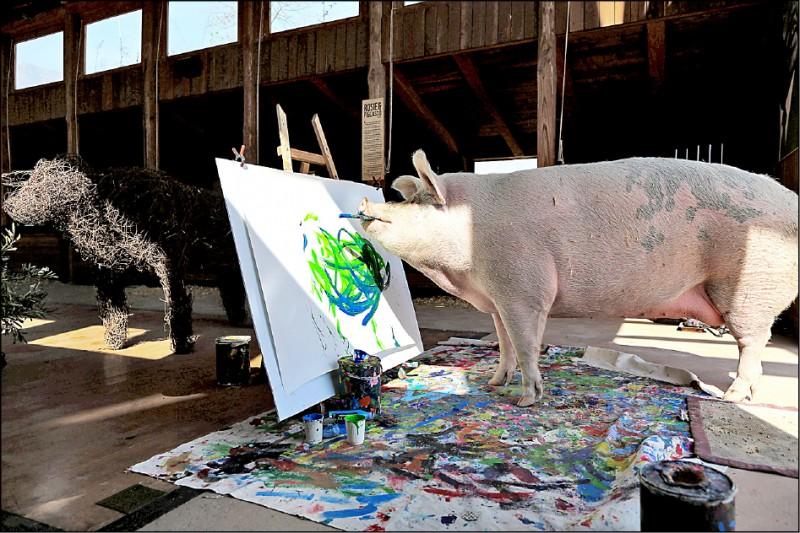 南非知名畫家「豬卡索」創作中。(路透)