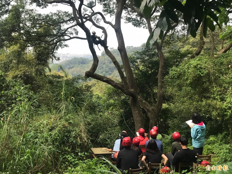 為推廣攀樹運動與職業,翁恒斌定期開課讓民眾參與體驗。(記者簡亭宇攝)