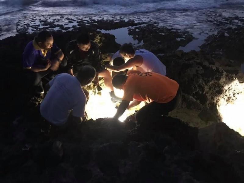 超罕見「大西洋海神」現身墾丁,潛界爭相走告搶拍。(邱文傑提供)