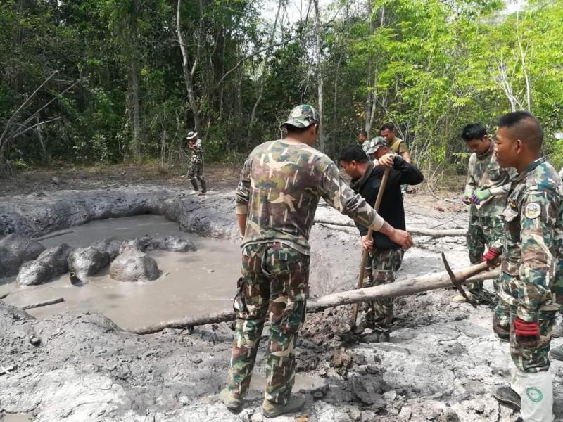 巡護員們以鋤頭人力在泥坑周遭挖出緩坡讓小象們能自行爬出。(美聯社)