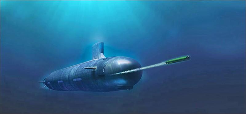 我國向美採購的MK48 MOD6型長程重型魚雷。(圖:取自雷神公司網站)。