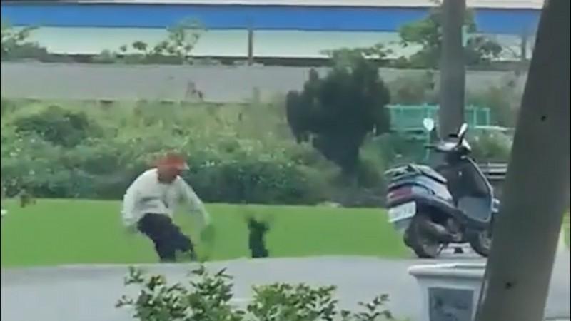 虐狗者將黑狗踢飛。(台灣動物緊急救援小組提供)