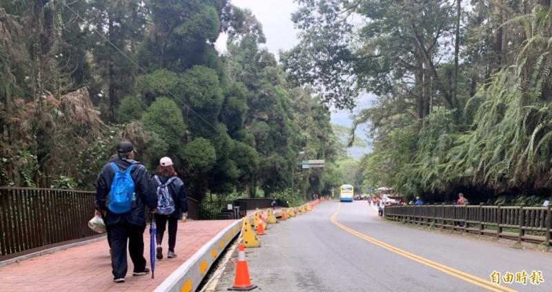 溪頭人行道改善工程,目前如火如荼施工中。(記者謝介裕攝)