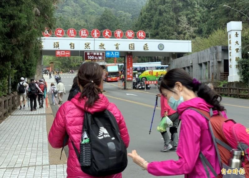 溪頭自然教育園區每逢假日吸引絡繹不絕的遊客前來遊玩。(記者謝介裕攝)