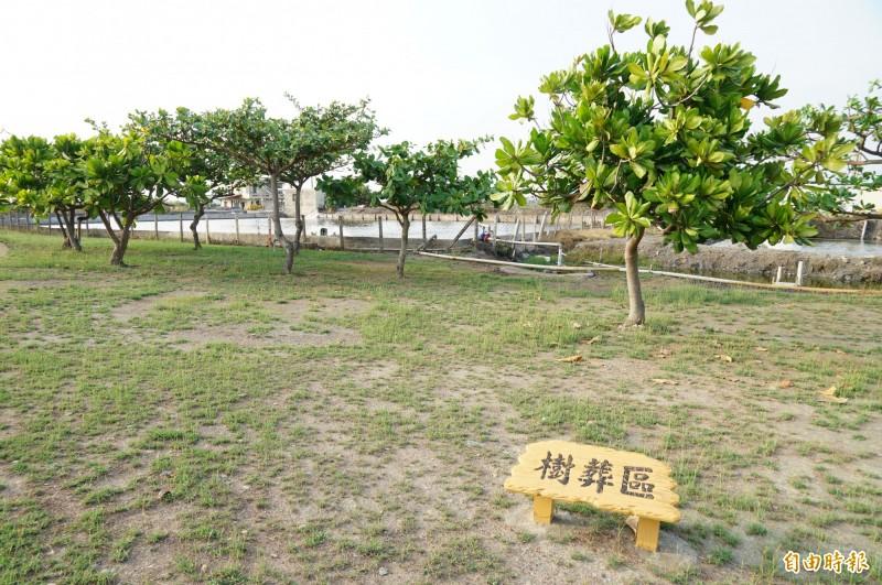 林邊鄉第六公墓有樹葬、花葬及壁葬區,圖為樹葬區。(記者陳彥廷攝)