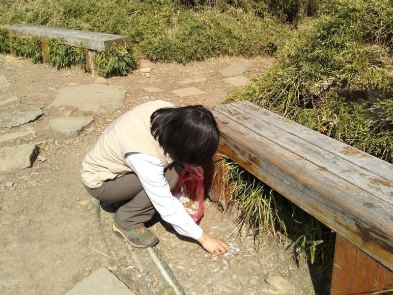 玉山塔塔加園區出現健行團隊亂撒紙屑的情況,工作人員只能徒手清理。(玉管處提供)