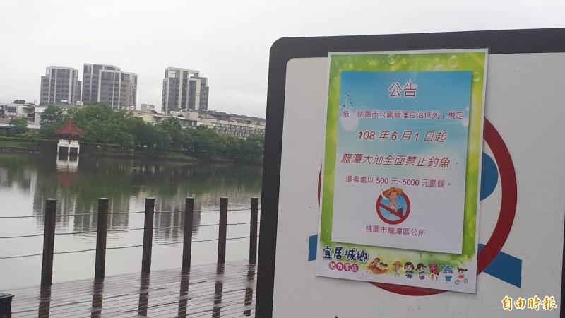 桃園龍潭大池6月起全面禁止垂釣 民眾反應兩極